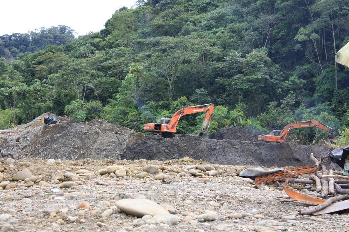 Colombia and the Choco Rainforest 2008
