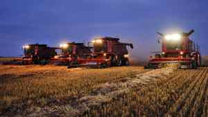 Combines harvest wheat on an Alberta farm on Sept. 26, 2011.