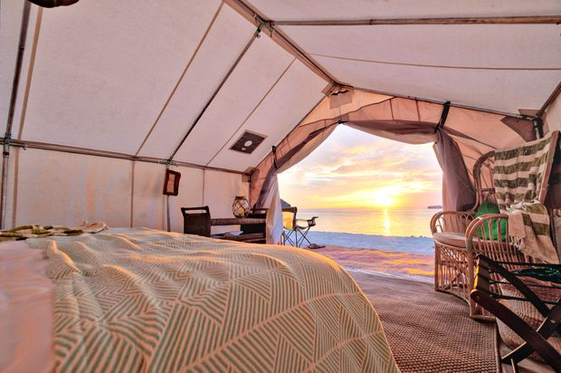 Need a true escape? Trade cell service for friendly sea lions at this Mexican glamping resort