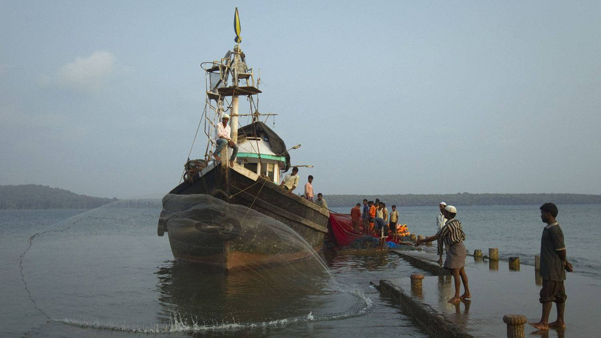 Fishermen ply their trade near the proposed site of the Jaitapur nuclear plant,
