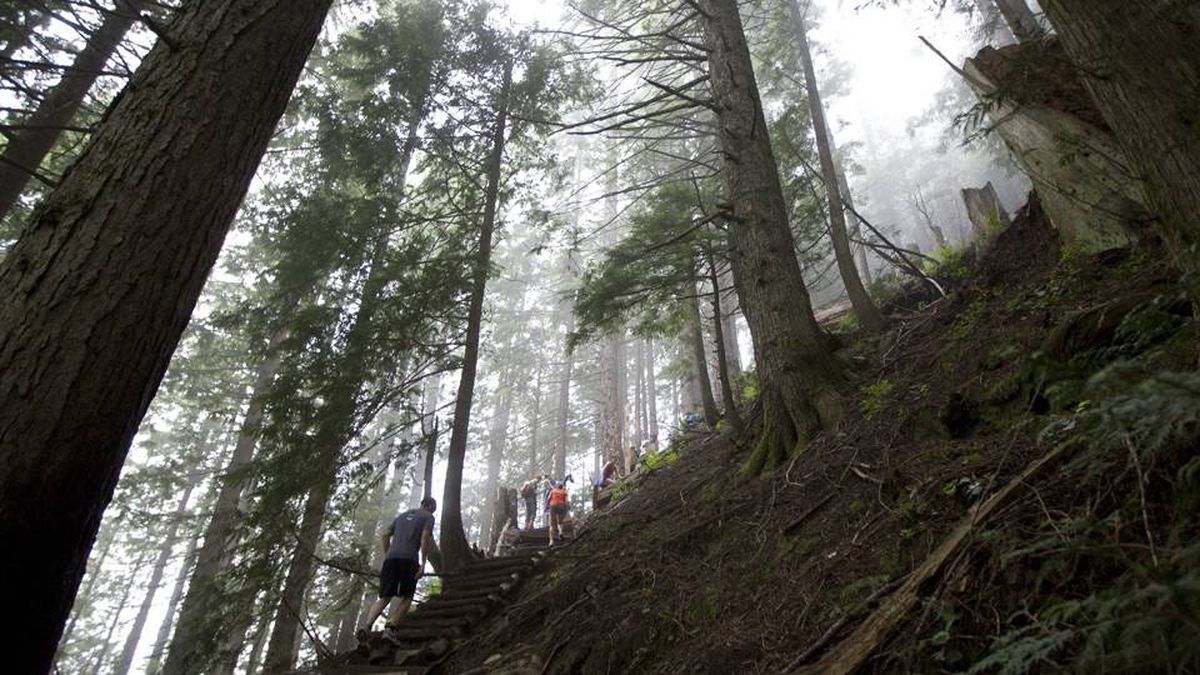 Nothing else in Canada – not even the CN Tower – compares to the elevation gain hikers endure when they take on the Grouse Grind. No wonder it's one of Vancouver's top outdoor destinations.