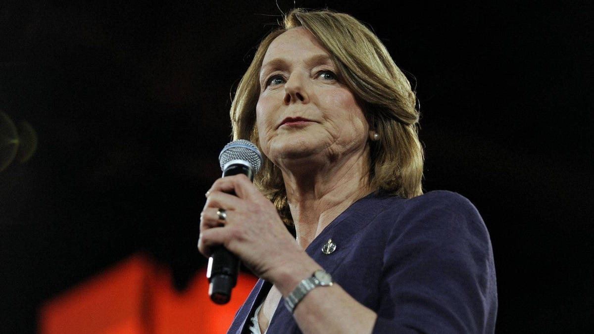 Finance critic Peggy Nash, shown in Toronto on March 23, 2012, hopes a series of NDP hearings on the Conservative government's budget legislation encourages Canadians to 'come out and find out what's in this bill.'
