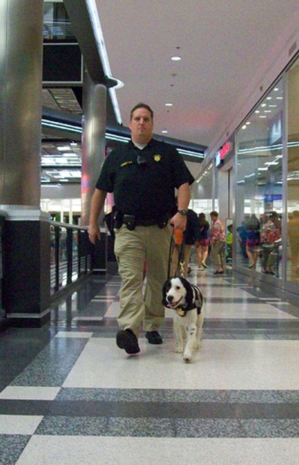 mall cops mall of america
