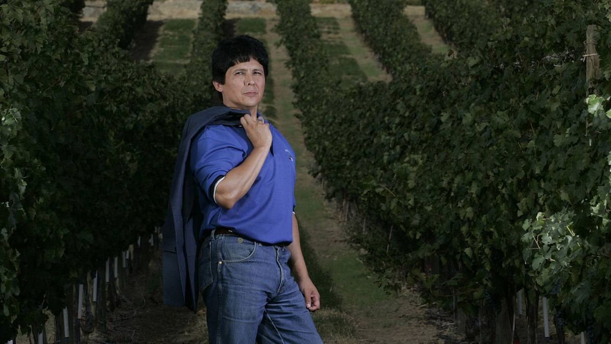 Chief Clarence Louie of the Osoyoos Indian Band stands in the rows of wine grapes at the Spirit Ridge Vineyard resort and spa in Osoyoos B.C. in September, 2007.