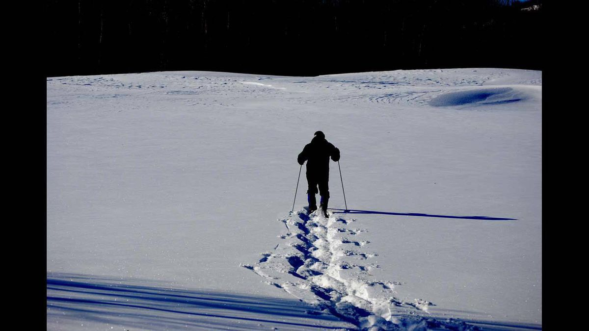 I took this photo of my husband as he snowshoed in Sudbury on the golf course after a fresh snow. Feb 2012