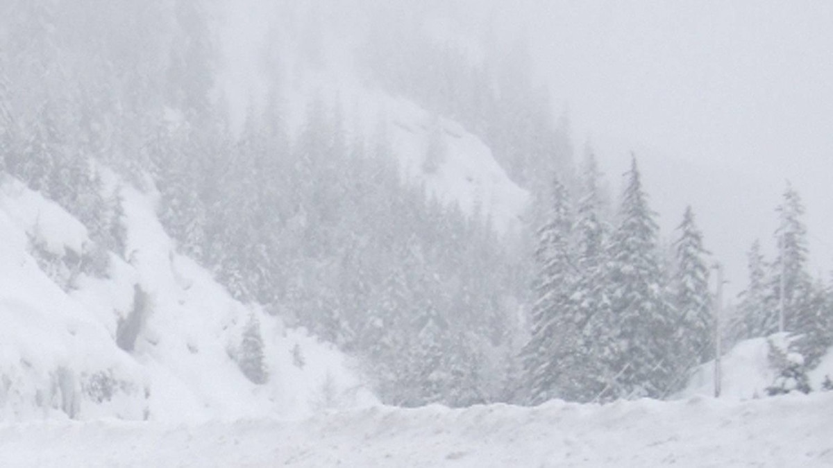 A file photo shows B.C. back country near Revelstoke after a January 2011 avalanche.