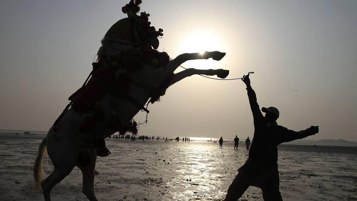 A Pakistani horse owner tries to control his horse while he waits for customers at Clifton beach in Karachi, Pakistan.