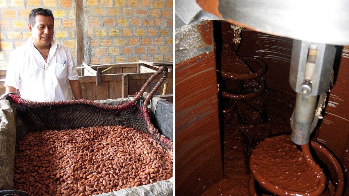 A Peruvian producer is shown with some cocoa beans that are undergoing fermentation (L). The processed cocoa is sent to a chocolate manufacturing facility in Switzerland to create the finished bars, which are also packaged and boxed there. Here, almonds are mixed with dark chocolate ahead of the creation of Camino's 100-gram bars. (R)