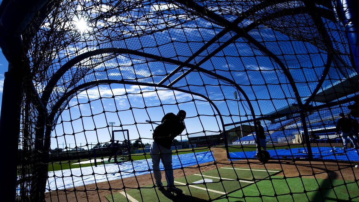 Toronto Blue Jays infielder Brett Lawrie is silhouetted while batting in the cage as he takes part in a early session in Dunedin.