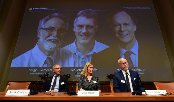 Two Scientists From U S And One From Britain Share Nobel Medicine