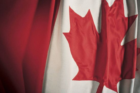 I saluted the flag many times during my 26 years of service in the Canadian Forces. I now practise condominium law and I can predict, with certainty, that Bill C-288 will cause a flap.