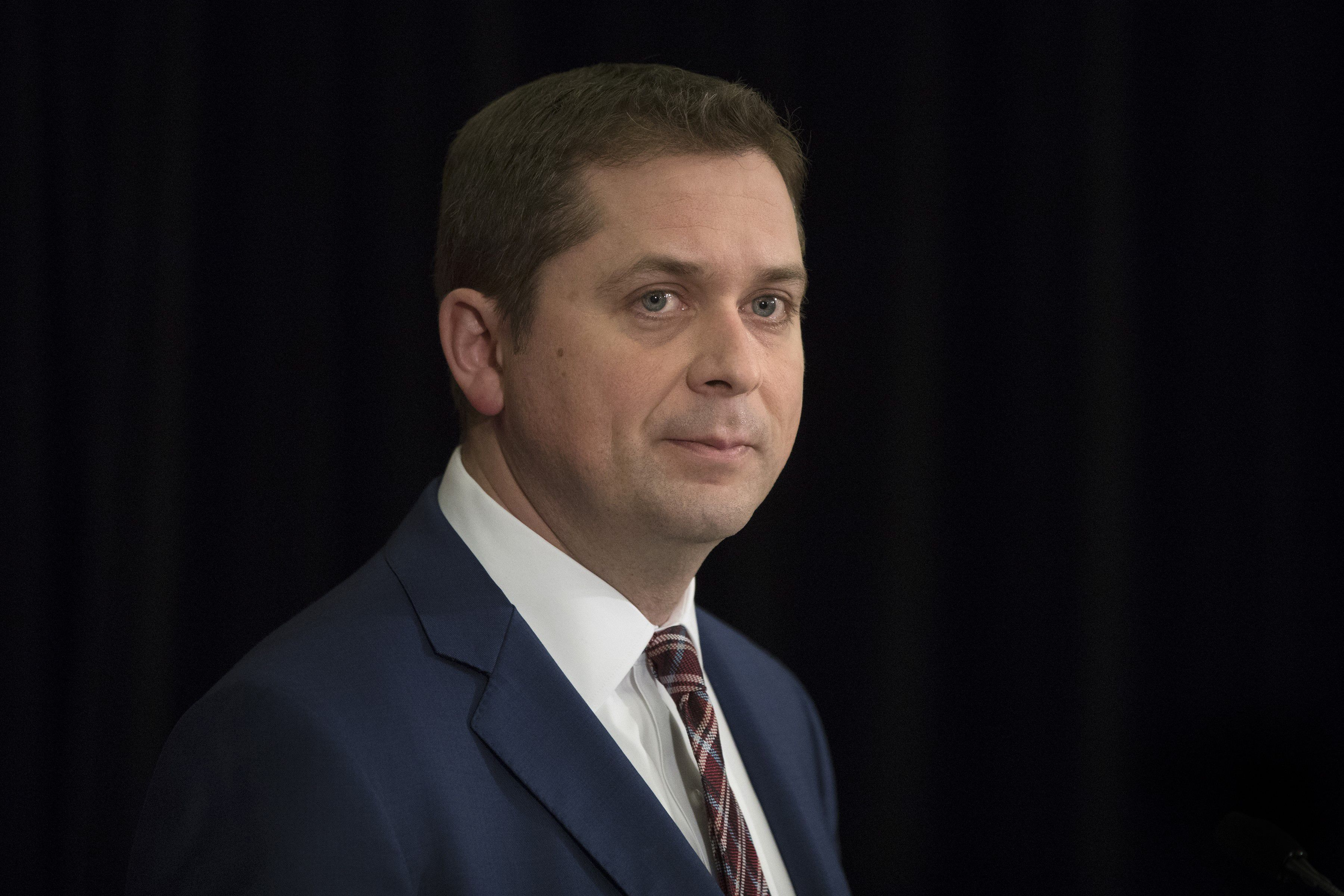 After New Zealand, Tory cancels event with anti-Muslim speaker; Scheer ripped by Harper aide for weak response
